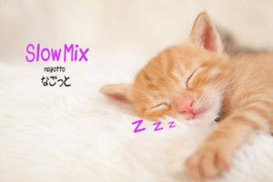 slow-mix-nagotto01
